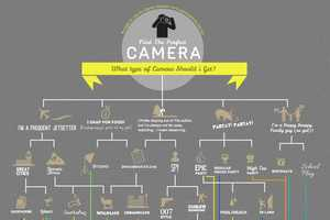 The 'What Type of Camera Should I Get' Chart is Realistic