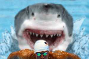 The Shark Olympics Series is Dangerously Competitive