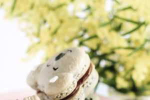 The 'Caramel Koala Macarons' are Absolutely Delightful and Adorable