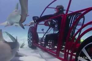 The 'Volkswagen Beetle Mobile Shark Cage' is a Submerged