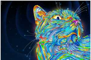 Matei Apostolescu Renders Psychedelic Images of Felines