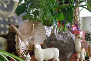 The 'Thrillz of Hillz' Dinosaur Pots are Eye-Catching and Quirky