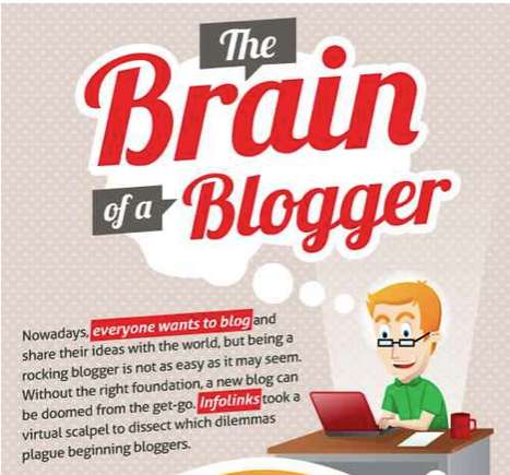Brain of the Beginning Blogger Infographic