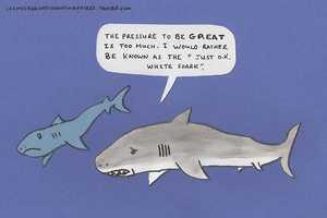 The 'Crimes Against Hugh's Manatees' Tumblr Takes on Shark Week