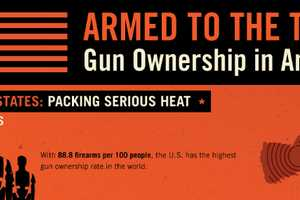 The 'Gun Ownership in American' Infographic Should Alarm Citizens