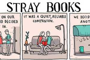 This 'Stray Books' Comic by Grant Snider Details Literature Overload