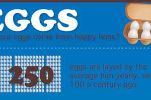 This Happy Hen Chart Explores an Ugly Truth Behind Factory Farms