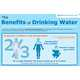 H2O Consumption Graphics - The 'Benefits of Drinking Water' Infographic is Health-Minded (GALLERY) 1