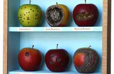 From Moss Carpets to Rotten Apple Art