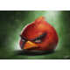 Realistic Avian App Renderings - Sam Spratt Illustrates Lifelike Versions of Angry Birds Characters (GALLERY) 1