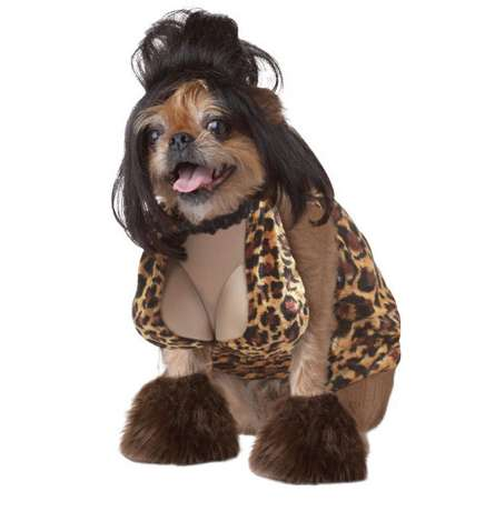 Dog Halloween Costume Shop