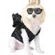 Hilarious Pooch Ensembles - The Dog Halloween Costume Shop Lets You Dress Your Dog Like a Celeb (GALLERY) 2
