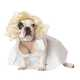 The Dog Halloween Costume Shop Lets You Dress Your Dog Like a Celeb 5