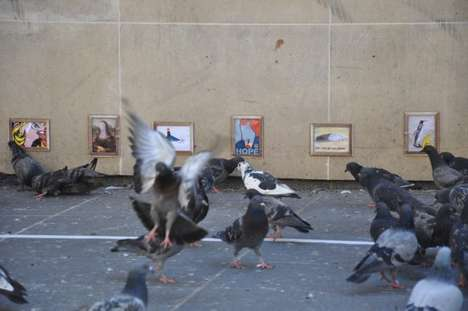 Street Art for Pigeons