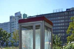 Phone Booth Aquariums in Japan Mesmerize with Playful Goldfish