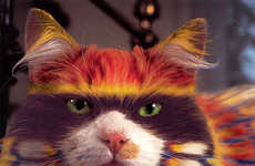 Controversial Colored Cat Books
