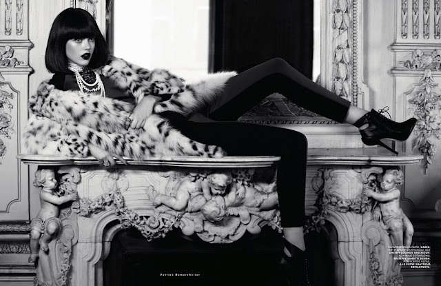 Feisty Fur Editorials