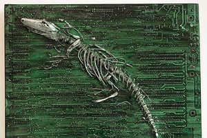 Peter McFarlane Creates Stunning Found Object Art