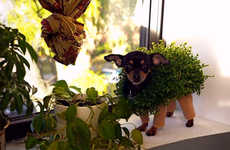 Plant-Like Pooch Outfits