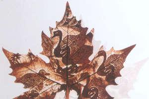Art Craft On Leaf
