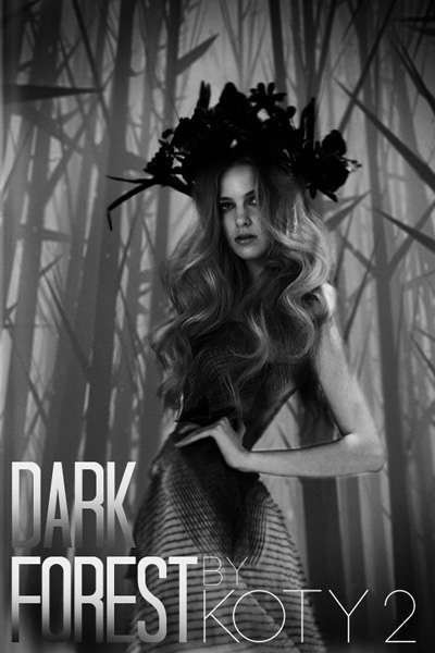 Dark Forest Design Scene
