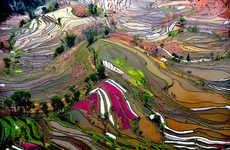 Surreal Chinese Landscapes