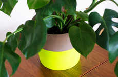 Neon DIY Planters
