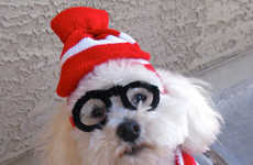 The Where's Waldo Dog Costume is Adorable and Simple