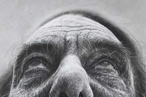 The Douglas Mcdougall Drawings are Powerful Images of Faces