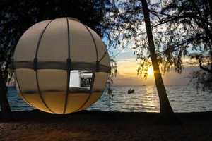 Experience the Beauty of Nature from the Air with the Cocoon Tree