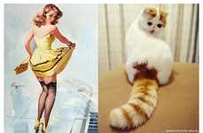 Suggestively Sprawled Feline Sites - The 'Cats That Look Like Pin-Up Girls' Tumblr is Spot On