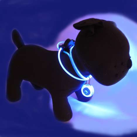 Lighted Collar and Safety Flashing Charm