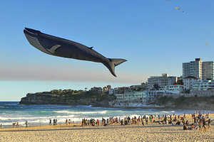 The Blue Whale Kite Will Have You Taking a Second Glance