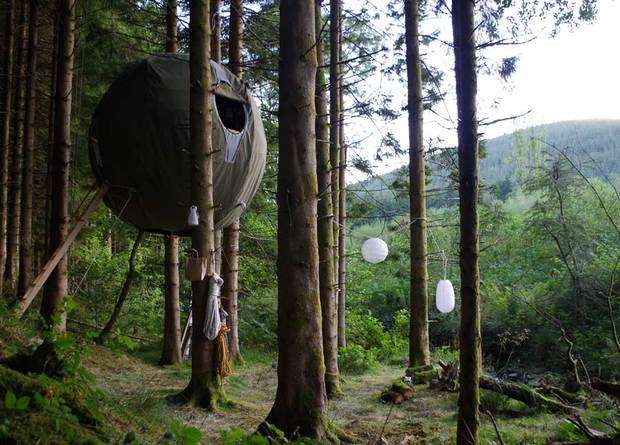 Tree-Suspended Temporary Tents