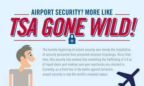airport security infographic