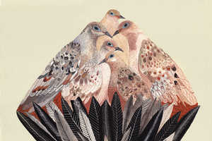 Michelle Morin Depicts Tons of Different Birds