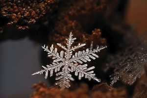 Andrew Osokin's Snowflake Photography Represents Winter's Beauty