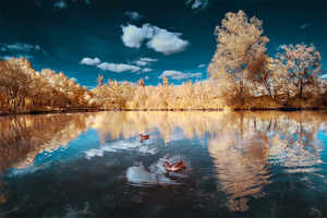 David Keochkerian Manipulates Color to Mesh Seasonal Landscapes
