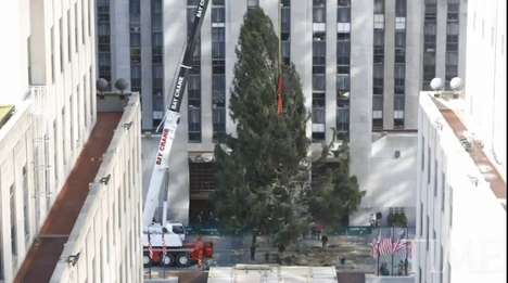 Rockefeller Christmas Tree Time Lapse
