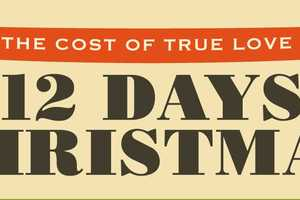 Twelve Days of Christmas Infographic Breaks Down the Cost of True Love