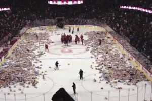 The Teddy Bear Toss Collected 20,000 Bears for Charity in Calgary