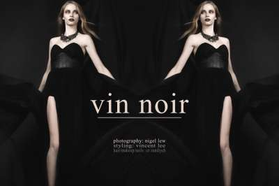 Vin Noir Design Scene 