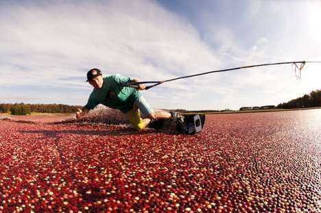 Wake Skating cranberry bog