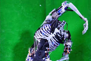 Humanoid Cyborgs Can Now Have Skeletal Structures and Muscles