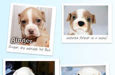 Charitable Plush Dog Replicas