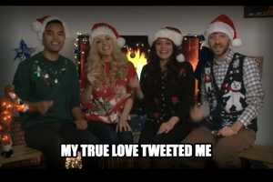 Brighten up Your Holidays with the 12 Memes of Christmas Video