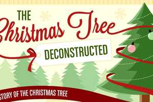 Learn About Decorative Fir With the Christmas Tree History Chart