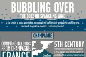 The Bubbling Over: Sparkling Wine Chart Matches Your Technique