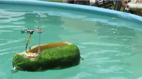 Radio Controlled Watermellon