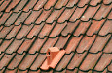 Bird House Shingles